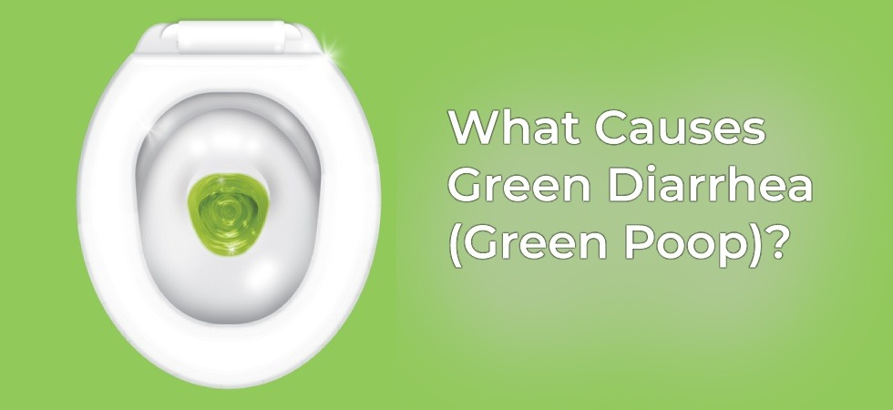 green diarrhea green poop possible causes symptoms treatments. Black Bedroom Furniture Sets. Home Design Ideas